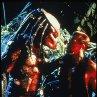 Still of Arnold Schwarzenegger and Kevin Peter Hall in Predator
